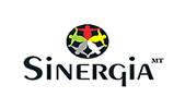 sinergia11